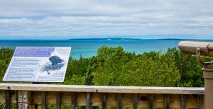 Mill Creek Discovery Park in Mackinaw area