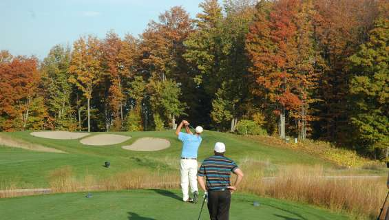 two people golfing among fall colored trees