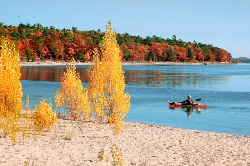 person canoes on a lake viewing trees turning fall colors