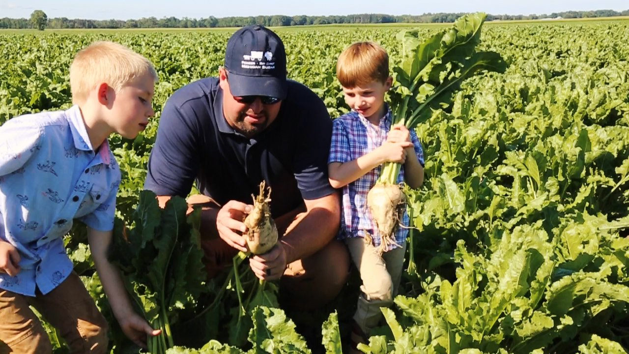 farmer showing sugar beets to his sons