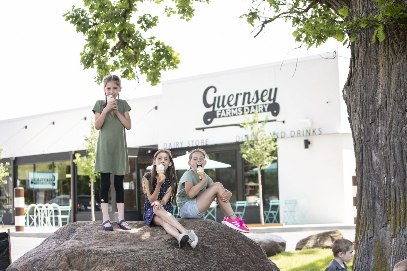The Great Guernsey Dairy Giveaway