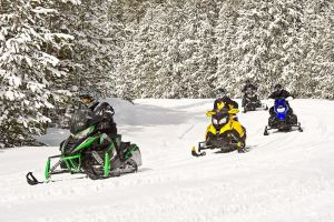 Snowmobiling in Gaylord, MI