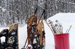 skis, snowshoes, and walking poles