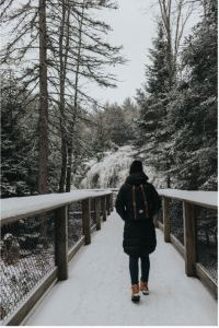 person walks across a snow covered wooden bridge in the woods